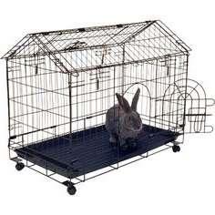 Як проводити дезінфекцію кліток для кроликів