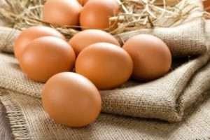 Як збільшити несучість курей взимку мікрокліматом в курнику