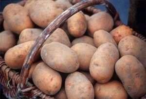 ранні сорти картоплі: опис і догляд