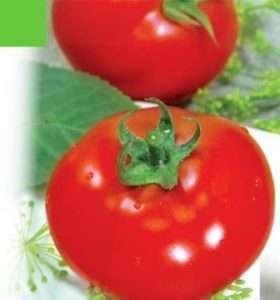 Сорт томату Загадка