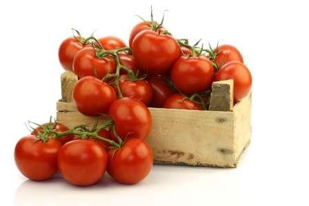 Найурожайніші детермінантні сорти помідорів для відкритого грунту - фото з описом