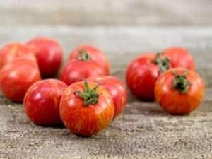 посадка томатів за місячним календарем
