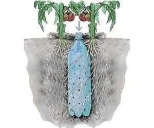 вкопана система крапельного зрошування