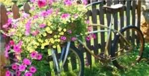 вазон на велосипеді