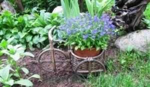 клумба на велосипеді в саду
