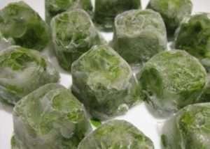 Особливості використання замороженої зелені