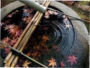фонтан тсукубай