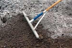 Як провести тест на кислотність ґрунту за допомогою харчової соди