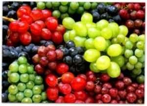 Формування винограду по простому методу Гюйо