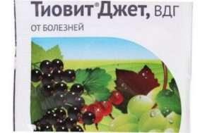 Тіовіт Джет для винограду
