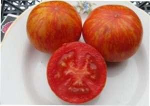 Elberta Peach (Ельберта персикова)