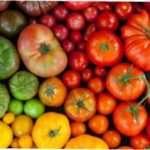 10 незвичайних сортів помідорів для вирощування на городі