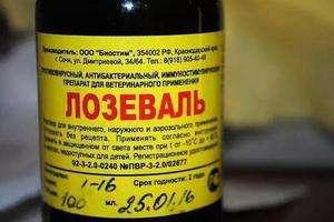 Лозеваль - противірусний препарат для лікування курей: інструкція з використання, опис та пропорції внесення