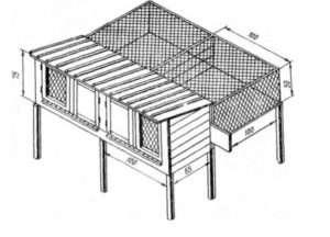 Схема простої клітки