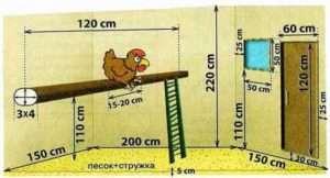 План курника на 20 курей
