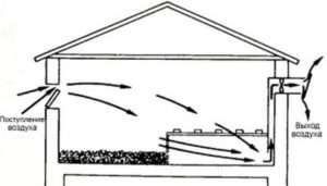 Система повітрообміну в курнику