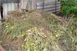Швидкий спосіб підготовки ґрунту