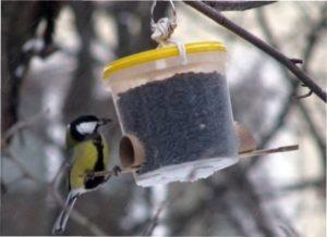 Кращі корми для птахів - натуральні