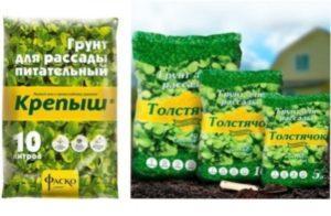 Можна використовувати і покупну суміш ґрунту