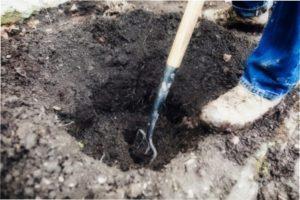 В яму потрібно помістити торф