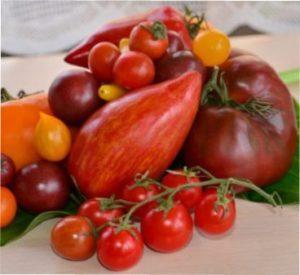 Мінуси пасинкування помідорів
