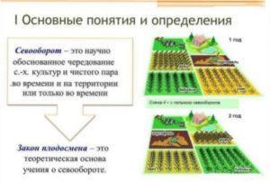 Завдяки сівозміну можна забезпечити захист від захворювань грунту
