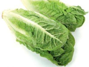 Способи підготовки насіння салату ромен