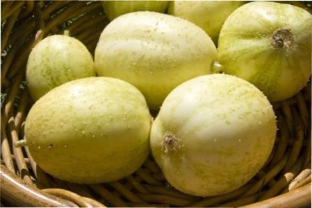 Вирощуємо у себе на грядках огірок-лимон (кришталеве яблуко)