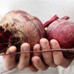 Переваги та шкода червоного буряка для організму