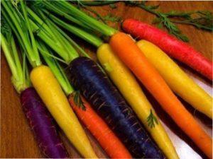 Догляд за морквою