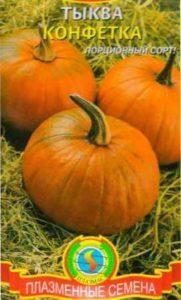 Агротехнічні особливості вирощування гарбуза
