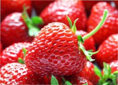 Полуниця садова корисні властивості, вітаміни та мінерали для здоров'я людини