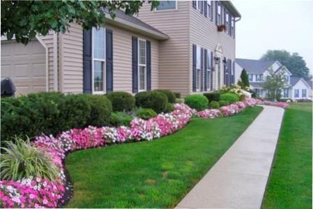 Багаторічні квіти для бордюрів: правила формування