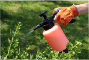 Фунгіцид для захисту рослин