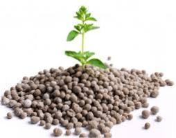 Напіврозчинні та водорозчинні фосфорні добрива - основні фосфоровмісні добрива їх види та застосування