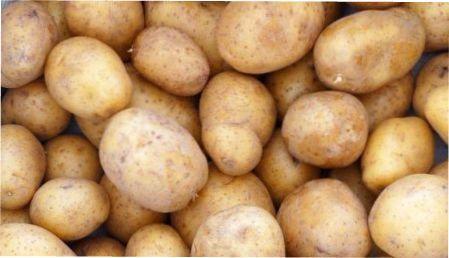 Як виростити великий врожай картоплі