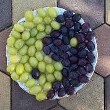 Як обрізати молодий виноград: опис, нюанси та поради