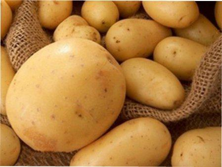 Як правильно виростити картоплю в мішку