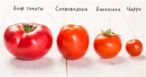 Особливості помідорів чері