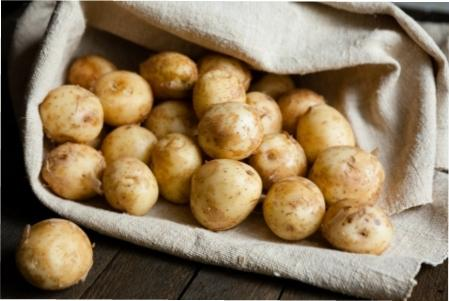 Як викопуати картоплю фото