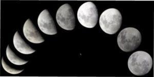 Вплив Зростаючого Місяця на вирощування рослин