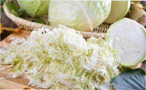 Яку капусту можна квасити?