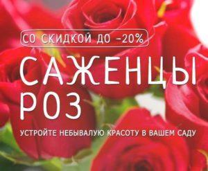 Календар кльову риби на 2020 рік для України по місяцях: коли буде клювати 🐟🐟🐟