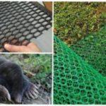 Ефективність сітки від кротів для захисту ділянок і газонів від шкідника