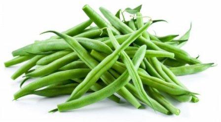Стручкова квасоля: коли збирати врожай — терміни та умови