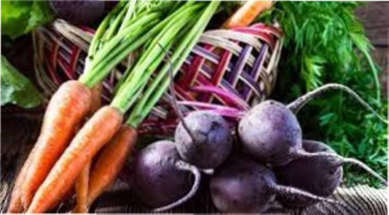 Коли і як копати моркву і буряк?