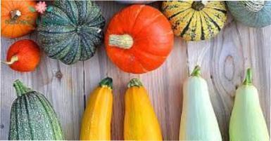 Як зберегти кабачки і гарбуз на зиму в домашніх умовах?