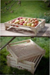 Як збирати та зберігати яблука