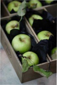 Тара для зберігання врожаю яблук