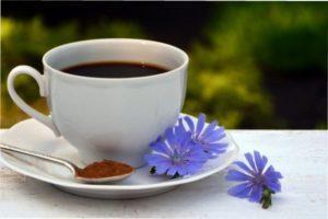 Цикорій - бур'ян, який замінить каву